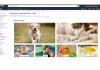 Amazon ha aperto il suo e-petshop