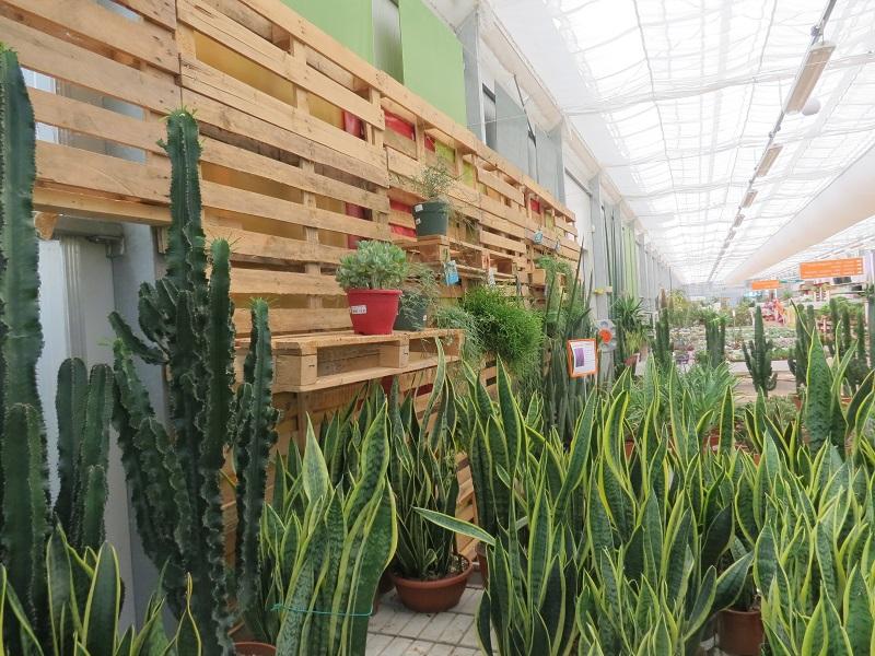 Bardin Garden Store Inaugurato Il Nuovo Punto Vendita