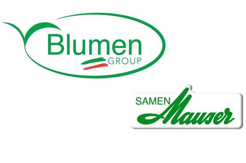 blumen ha comprato la svizzera samen mauser. Black Bedroom Furniture Sets. Home Design Ideas