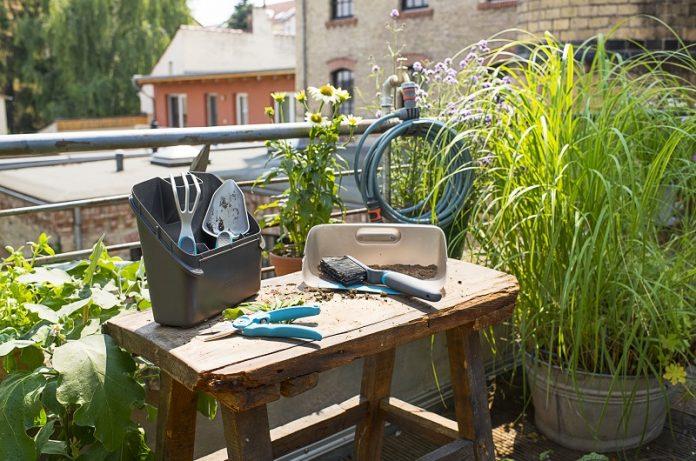 attrezzi manuali per l'orto urbano