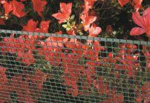 rete da giardino