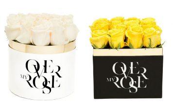 rose in confezione regalo