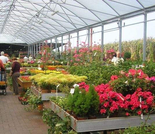 regolamentazione dei garden center in Lombardia