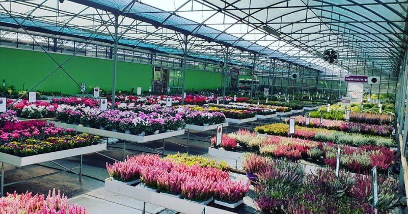 garden center Flordenny