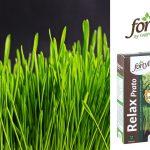 concime microgranulare per il tappeto erboso