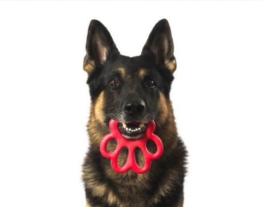 gioco per cani in materiale atossico