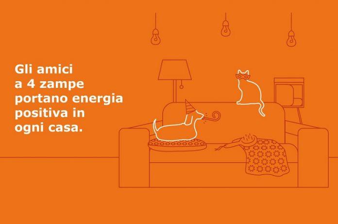 Ikea ha aperto un petshop