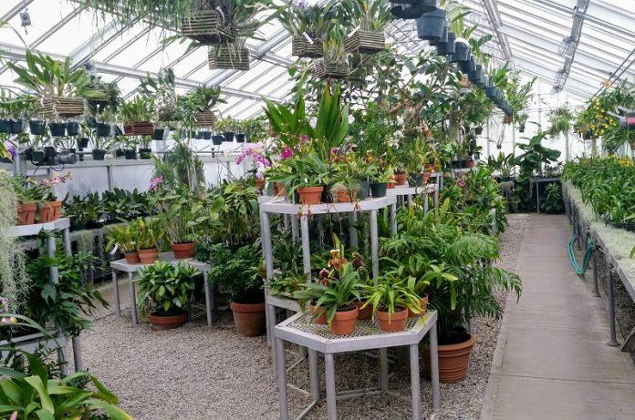 garden center più sostenibili