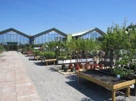 Regione Lombardia riconosce i garden center