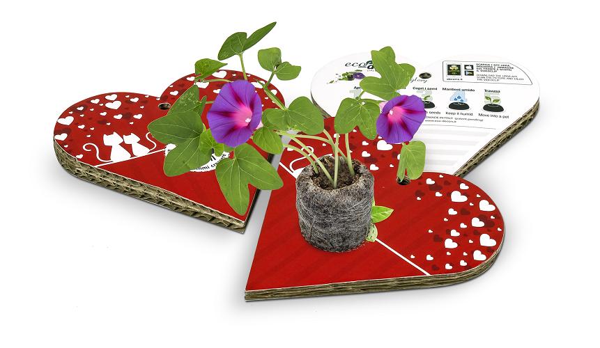 cartolina con semi da coltivare