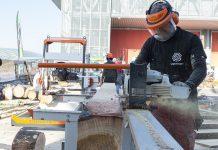 recupero legno urbano