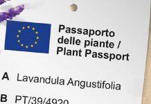 passaporto per le piante