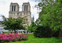 mercato francese del giardinaggio