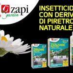Tares Zapi