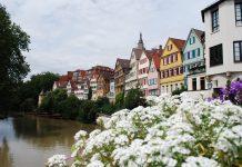 giardinaggio in Germania