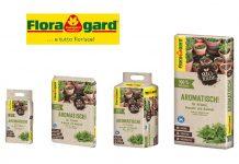terriccio per piante aromatiche