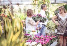 Garden Festival d'Autunno 2020