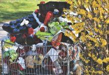 plastica usa e getta per le piante