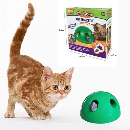 Soluzioni-originali-per-il-giardino-gioco-per-gatti