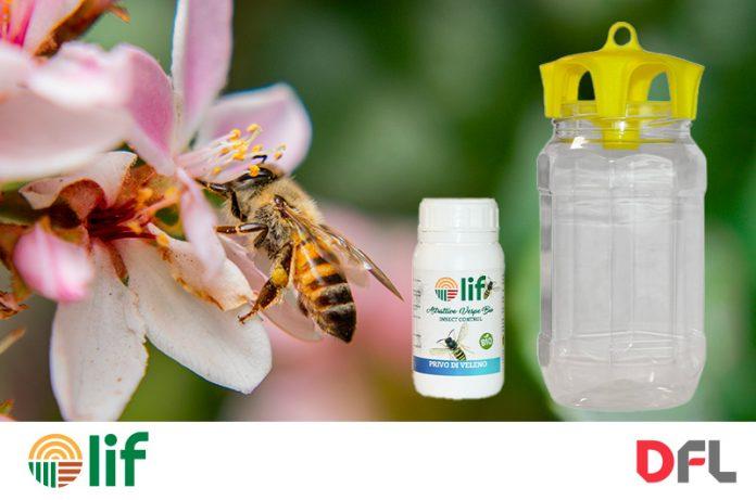 trappola ecologica cattura vespe