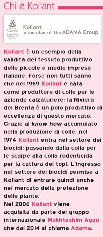 Arianna Fracasso