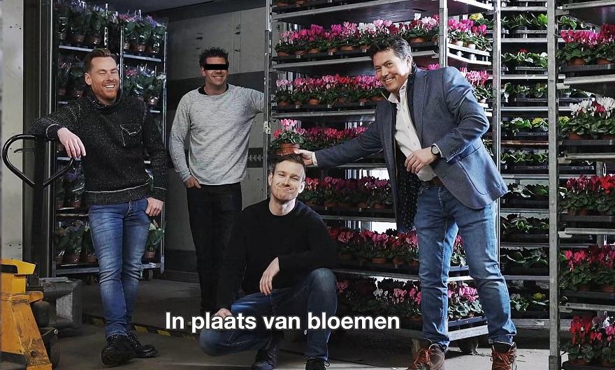 Malavita e floricoltura
